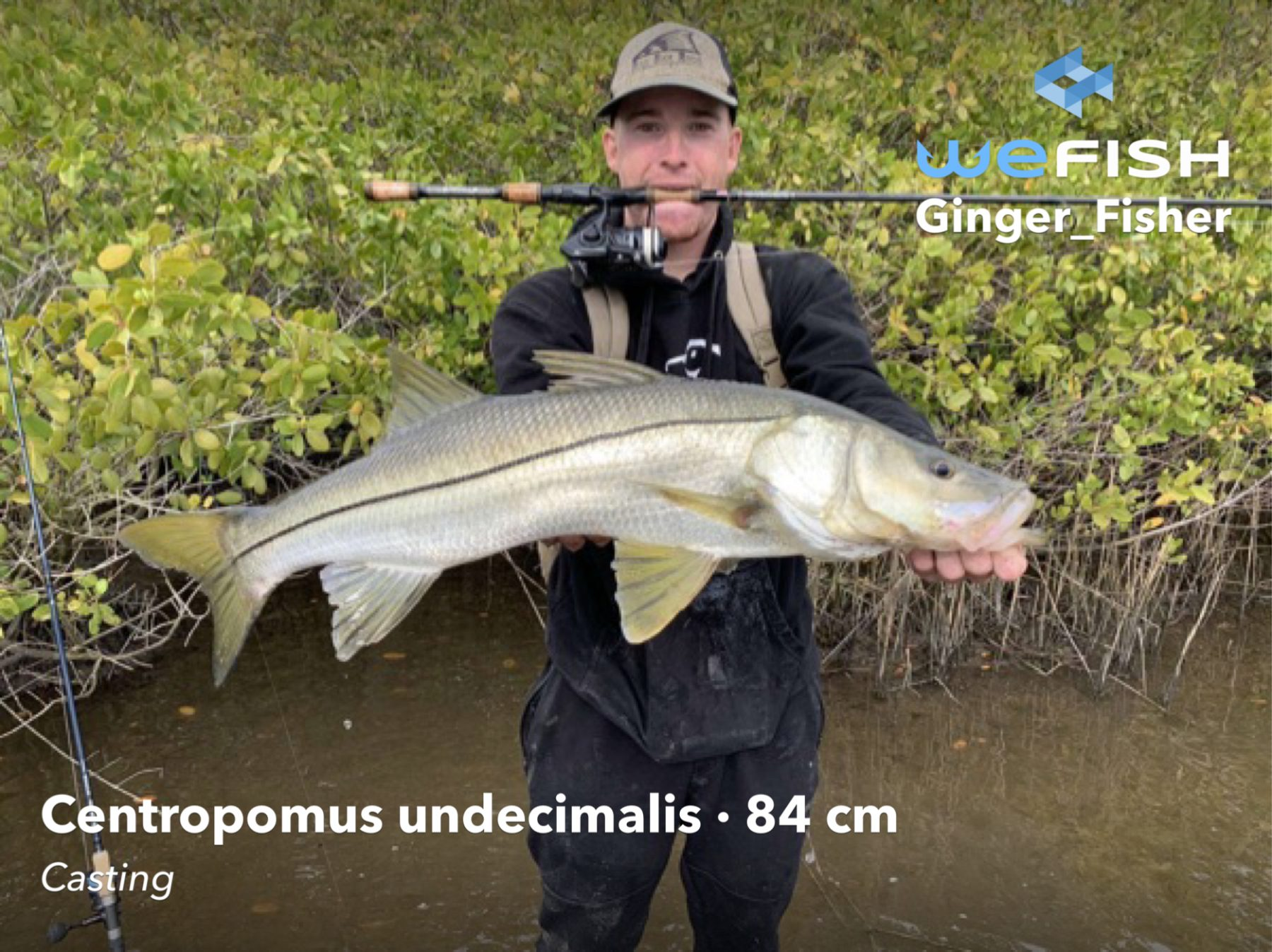 Snook catch Best Fishing Spots in Florida fishing app wefish