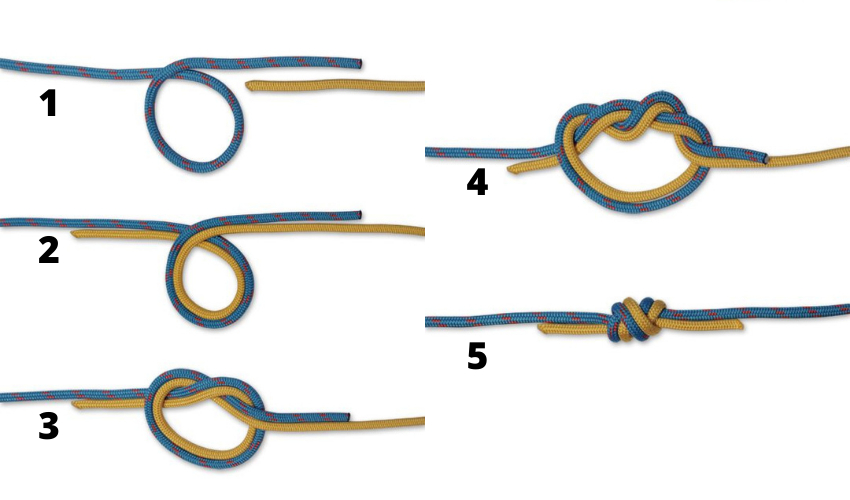 Fishing knots, surgeon's knot  WeFish App the best  knots for fishing